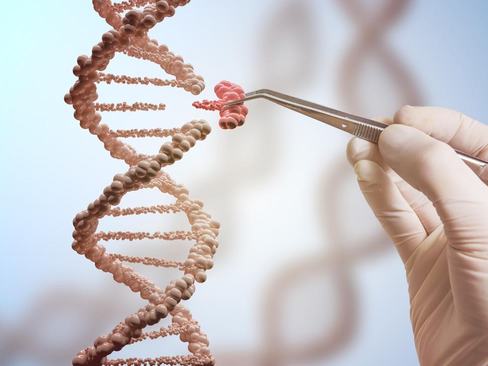 Anvisa Aceitará Registro Comercial De Terapias Que Envolvem Alteração DNA